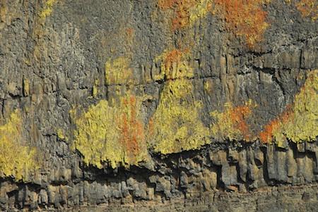 Eastern Washington's natural art.