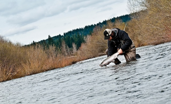 The Man, Jeff Hickman, hoisting winter steel on the Clackamas.