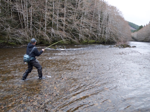 Mega beast headed downstream fast. The islands steelhead, even the small streams, average between seven and 12 pounds and plenty of fish to 18 or 20 exist.