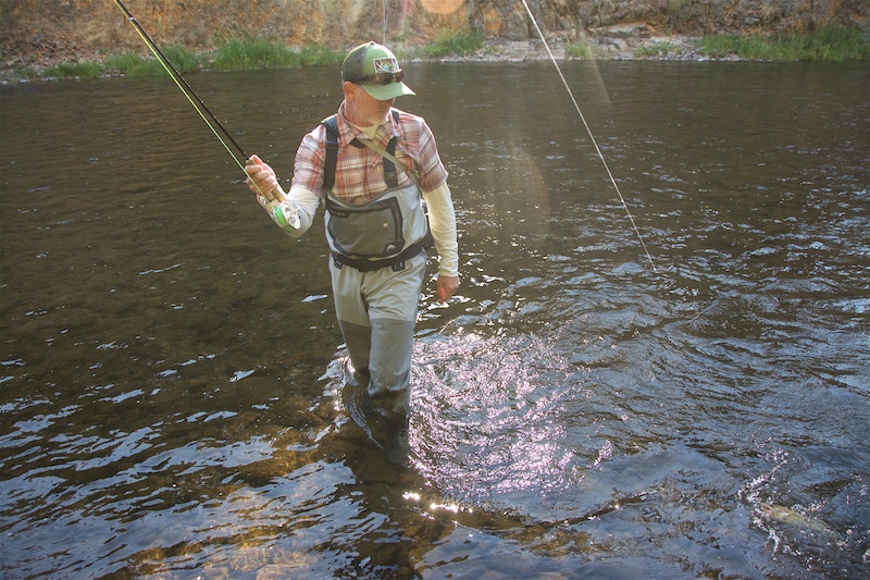 Fish are taking dries into the early evening. Don't be afraid to stay until last light. These Indian summer days won't last forever.