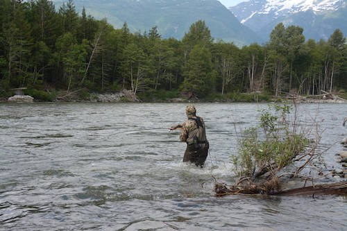 If you want to do one of the Mother of All Fly Fishing Trips, go swing the Dean River along the British Columbia coast. Jeff Hickman now owns both lodges on the lower Dean and you could inquire about openings at BC West and Kimsquit Bay Lodge. Availability won't last long if, in fact, all openings aren't sold out already.