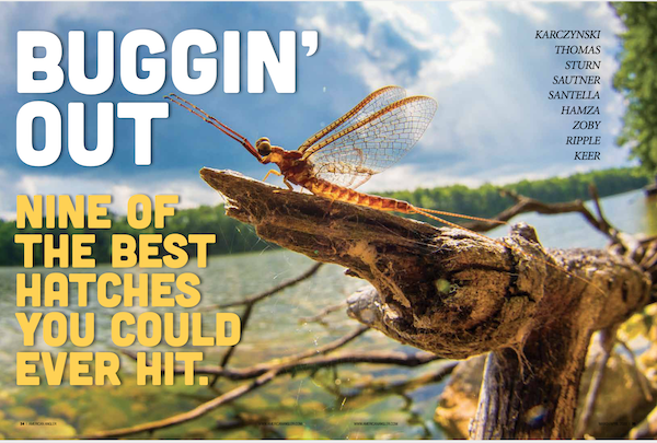 The opener to the Hatches section in the March/April issue of American Angler. Do not miss out on seeing/reading this collection of pieces on some of the best hatches in North America, some well known and others somewhat obscure.