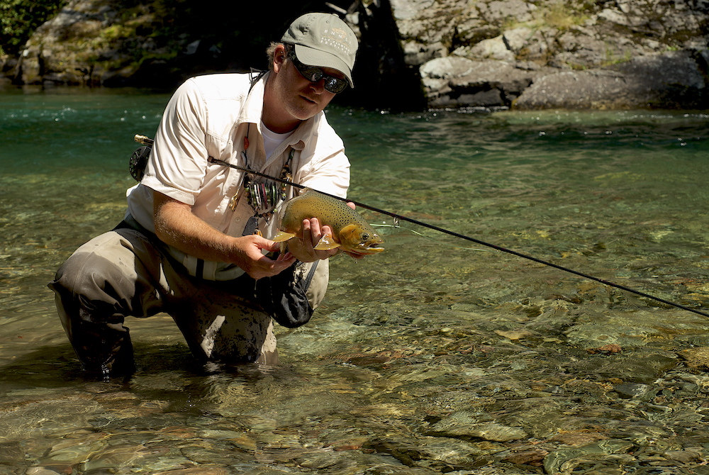 A real nice westslope cutthroat ready for release.